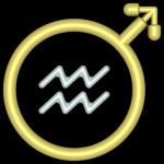 Segno astrologico Acquario